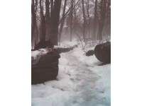 1path-to-foggy-splendor